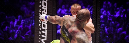 Picture gallery from KSW 35